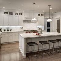 White Kitchens Transitional White Kitchen